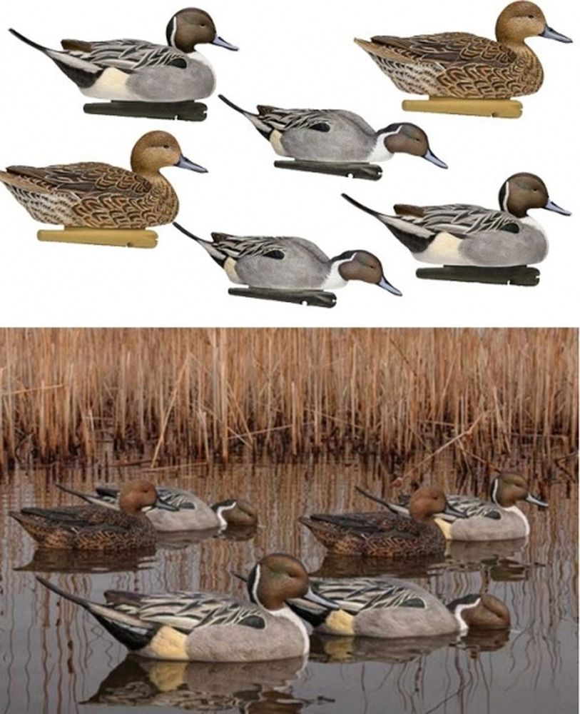 Комплект Avian-X Topflight Pintails